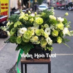 Lẵng Hoa Sinh Nhật Green Wicky