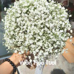 Bó hoa cưới cầm tay Hoa Baby-HCT09