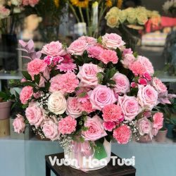 Chậu hoa hồng Ohara 2