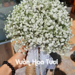 Bó hoa cưới Baby