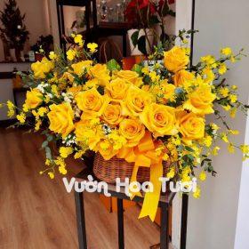 Giỏ hoa hồng Ohara vàng vũ nữ