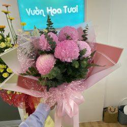 Bó hoa cúc mẫu đơn Hồng