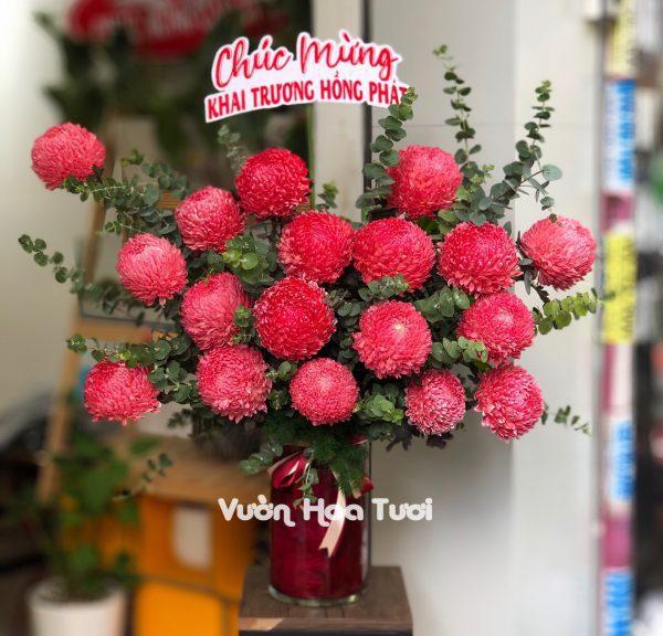 Lẵng hoa cúc mẫu đơn đỏ sang trọng