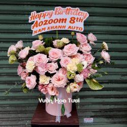 Lẵng hoa chúc mừng hồng Ohara